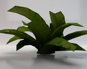 3D asset Dusty Plant