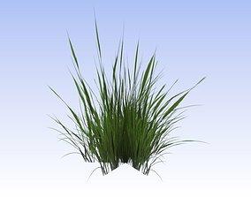 Free Grass 3d Models Cgtrader