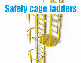 3D Double safety cage ladder
