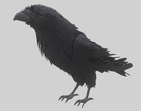 animated Animated Low Poly Raven Model With PBR