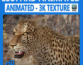 3D Animated Leopard