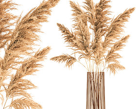 3D Bouquet of dried reeds in a Vase 121