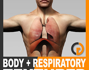 Human Male Body and Respiratory System Textured 3D model 1
