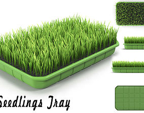 Seedlings Tray 4 3D