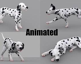 3D model dog dalmatain spotty dog