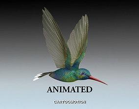 Humming bird 3D asset