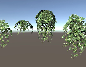 Ivy Clumps with Levels of Detail 3D asset