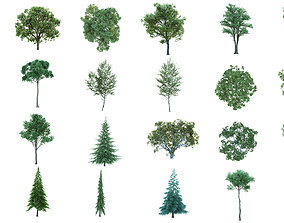 75 Cutout Trees Collection 3D