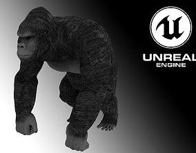 animated Gorilla - King Kong - 3D Model