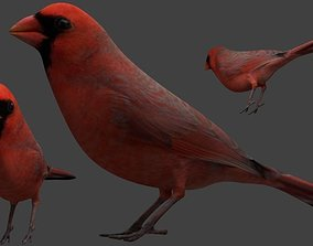 Bird Cardinal Red Simple 3D printable model