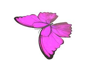 Butterfly v1 003 3D model