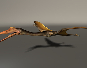Quetzalcoatlus High Poly 3D