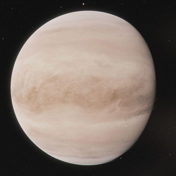 46k Venus