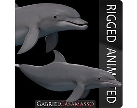 3D model BottleNose Dolphin Tursiops Truncatus