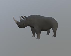 3D rigged Rhinoceros