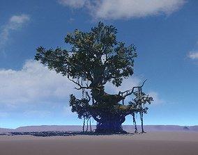 Ancient Tree V18 3D asset VR / AR ready