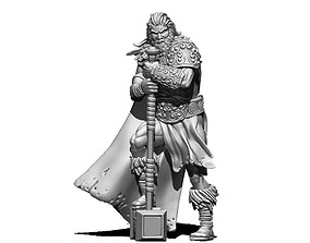 Viking jarl - Jorund 35mm scale - 3D print model