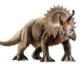 Triceratops 3D asset low-poly PBR