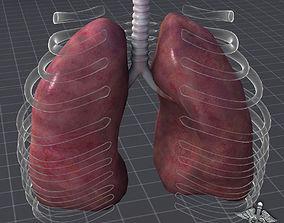 maya Lungs External 3D