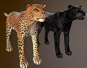 Leopard and Black panther - lowpoly 3d model low-poly