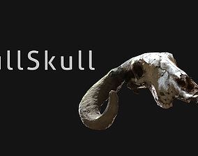 Bull skull 3D asset
