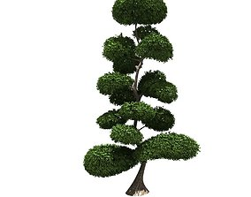 3D Cutted styled bush buxus
