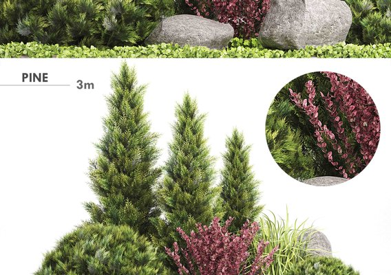 N-1 Plants Modeling - Set 222 - Autodesk 3ds Max & GrowFX