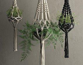 3D Macrame Hanging Pots with Plants