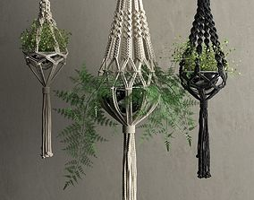 Macrame Hanging Pots with Plants 3D model