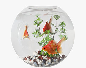 pet aquarium with goldfish 3D