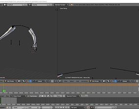3D model First Person rig setup