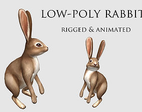3D asset hare rabbit bunny animation