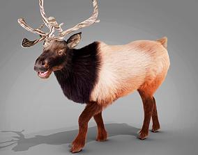 3D asset Fur Red Reindeer Rigged Blender