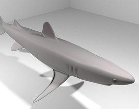 Shark - Piked 3D