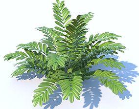 3D model Cardboard Palm plant