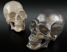 3D model Christopher Guy Decorative Skull