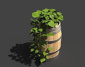 Ivy Vines Plant 3D model