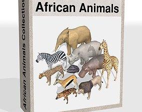 African animals 3D asset