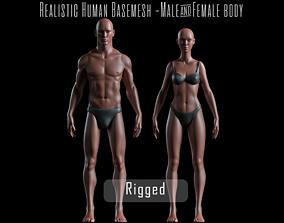 Realistic Human Basemesh - Rigged - UVMapped - 3D model 3