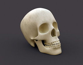 head Human Skull 3D model
