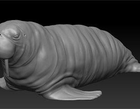 Walrus 3D print model sculpture