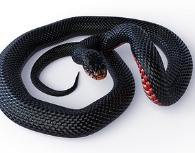 Animated Red Bellied Black Snake 3D asset VR / AR ready