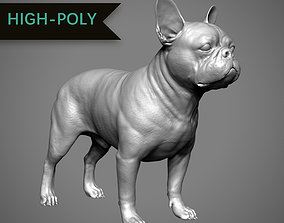French Bulldog High-Poly 3D print model PBR