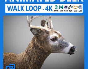 Animated Deer 3D model