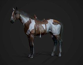 3D model Stallions - Game Ready