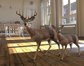 deer animated and alembic files also included 3D model