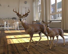 model 3D model deer animated
