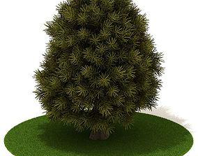 3D 3 D Tree Texture