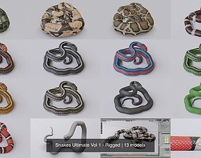 Snakes Ultimate Vol 1 - Rigged 3D model