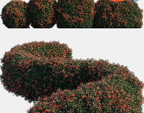 3D model Auto hedge collections 6